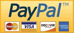 pay pal button